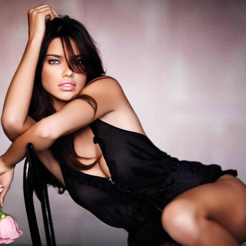 Adriana Lima in lingerie and holding pink rose wallpaper