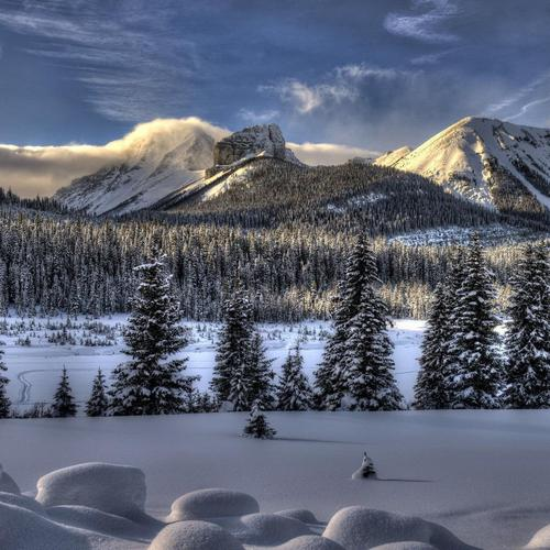 Amazing Winter Landscape wallpaper