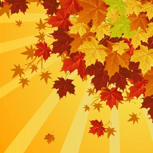 Autumn leaves vector wallpaper