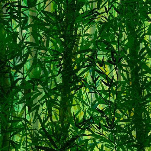 Bamboo trees texture wallpaper