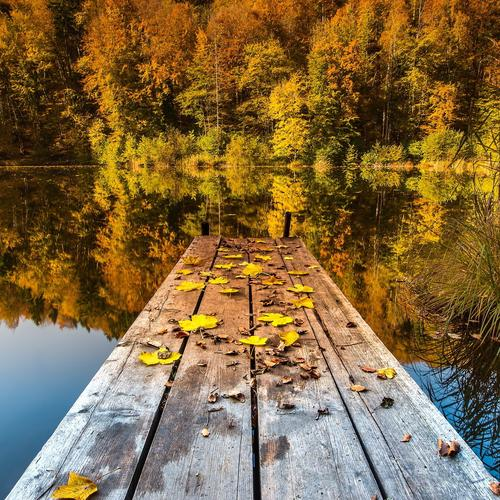 Beautiful dock in autumn wallpaper