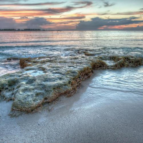 Beautiful seascape with sponges