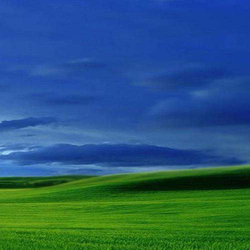 Blue green field landscape