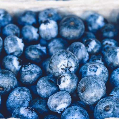 blueberry mart fruit nature eat food