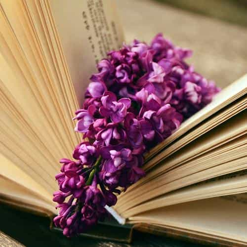 book read time flower