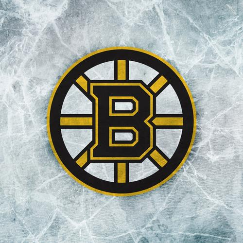 Boston Bruins Logo sfondo