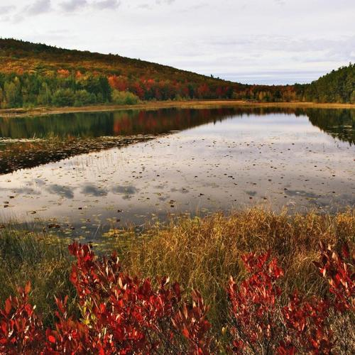 Breakneck Pond In Acadia National Park Maine wallpaper