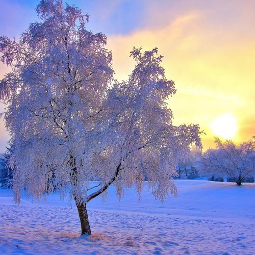 Breathtaking winterscape wallpaper