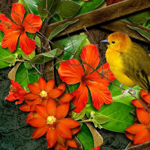 Bright orange Flowers with Bird and Butterfly