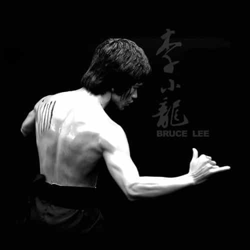 bruce lee sports actor celebrity dark