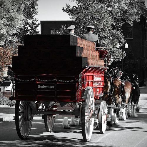 Budweiser clydesdale wagon wallpaper