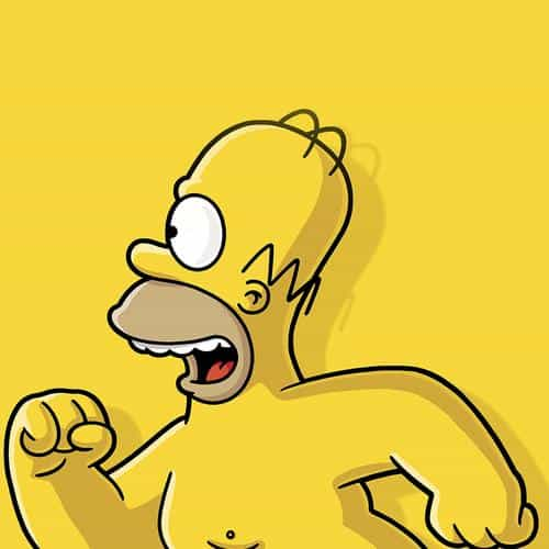 catch homer if you can homer simpsons illust