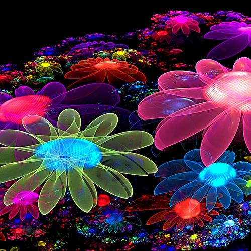 Colorful abstract flower glow wallpaper