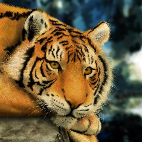 Crouching Tiger wallpaper
