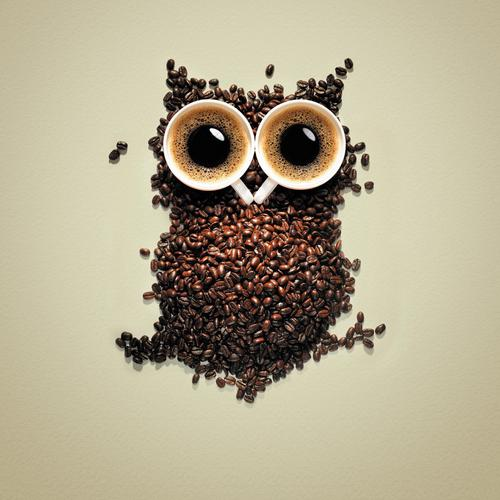 Cute owl made from coffee cup and coffee beans