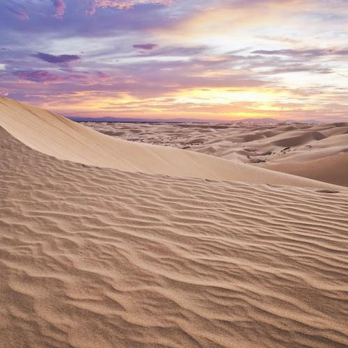 Desert dunes in sunset