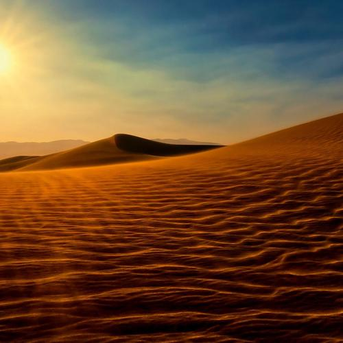 Desert under sunshine