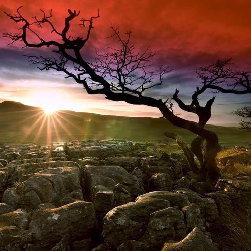 Deserted land in sunshine and red sky wallpaper
