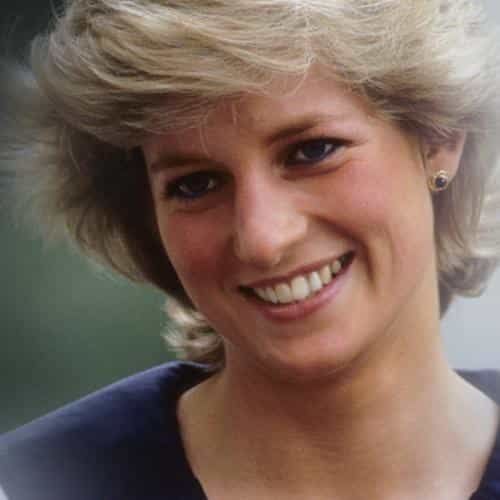 diana princess britain beautiful