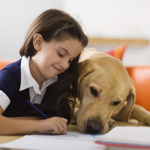 Dog helping little girl with her homework