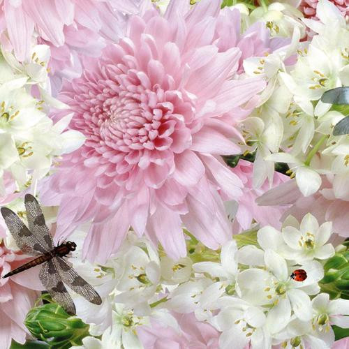 Dragonfly with pink and white flower wallpaper