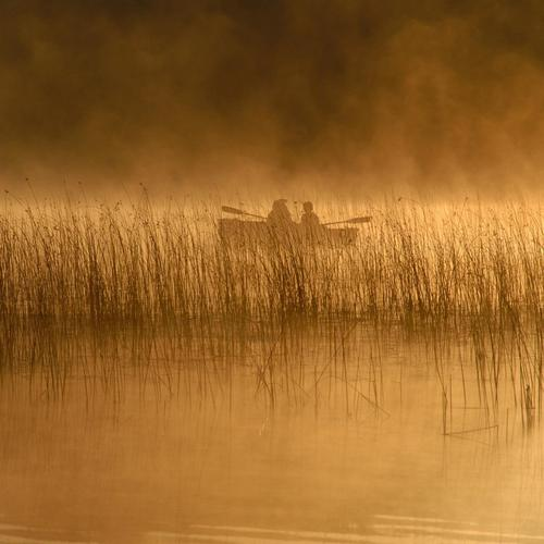 Early Morning Fishing On A Misty Lake bakgrunnsbilder