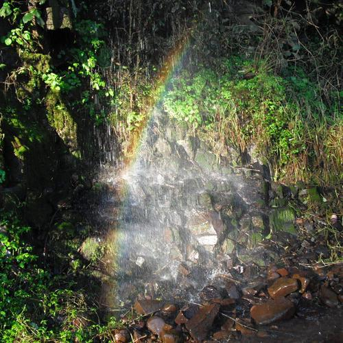 End of the rainbow in forest