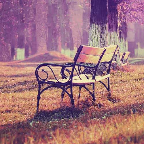 fall blue park chair lonely nature