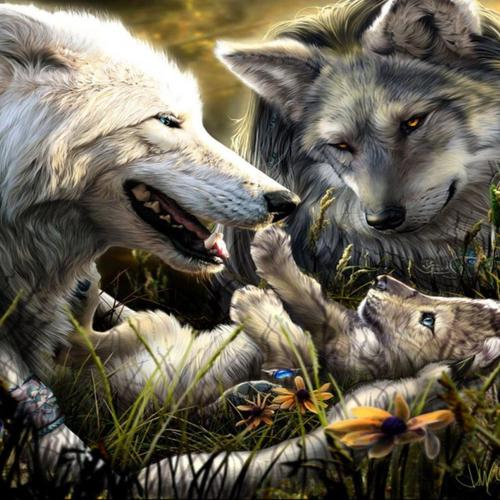 Family Of Wolves wallpaper