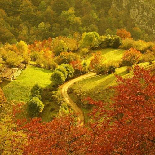 Farm in a valley forest in autumn