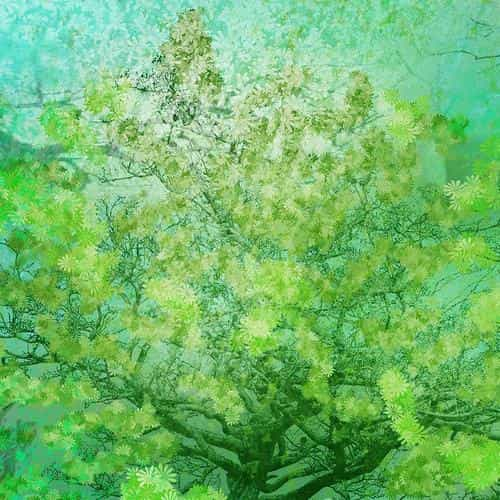 flower spring art green illust happy