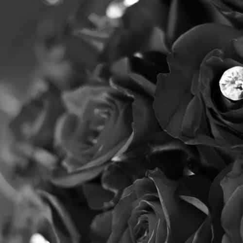 flower with diamond dark bw love propose