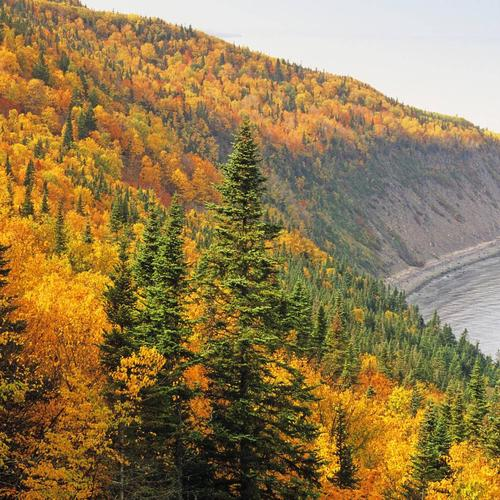 Forillon National Park Quebec Canada In de herfst behang