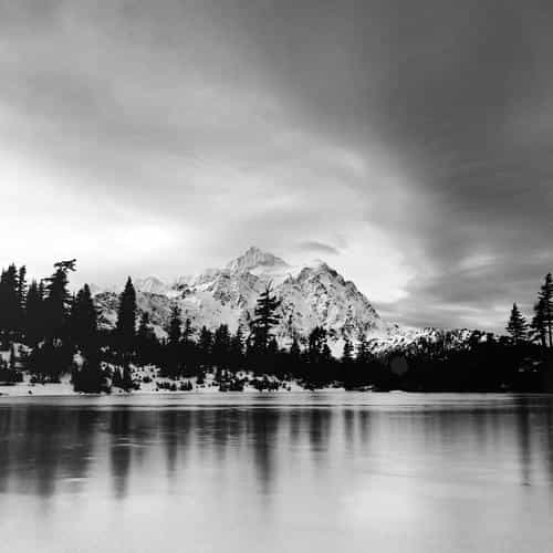frozen lake winter snow wood forest cold bw dark