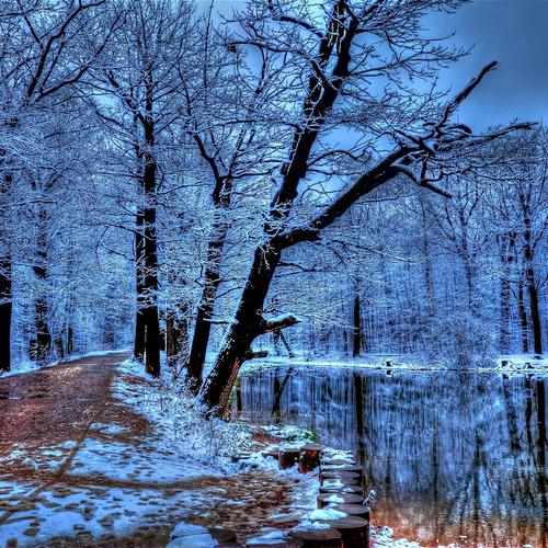 Frozen walking path in winter hdr