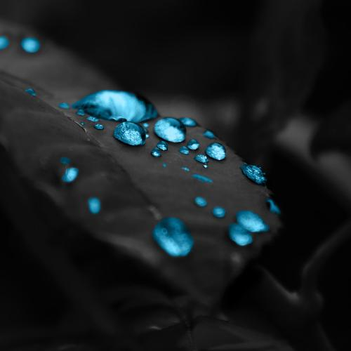 Glowing blue water drops on leaves