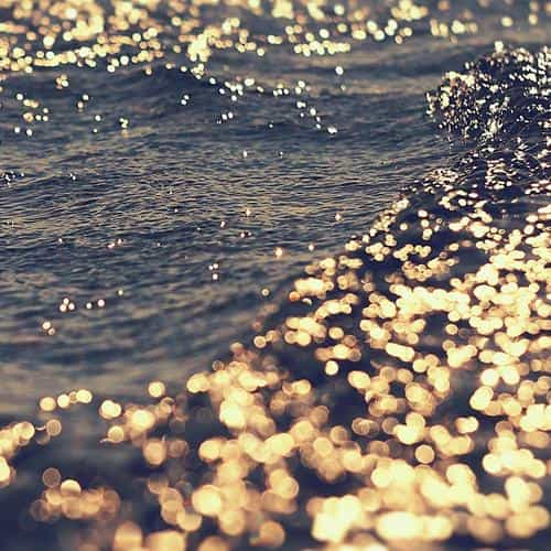 gold sea water sunset ocean