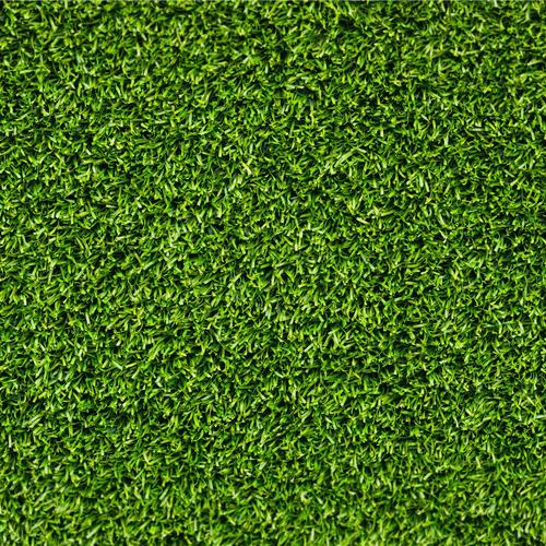 Green grass texture wallpaper