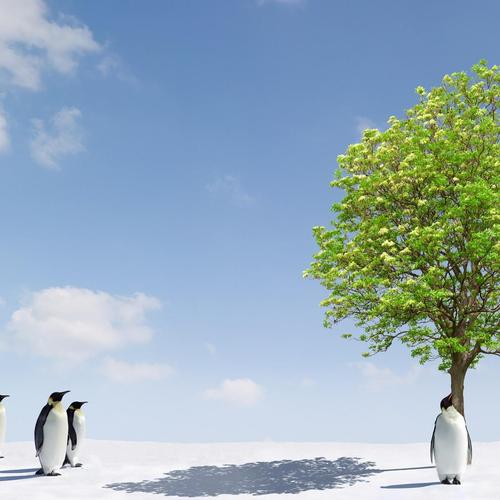 Green tree on North Pole with penguins