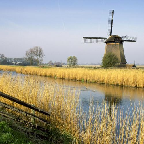 Holland windmill wallpaper