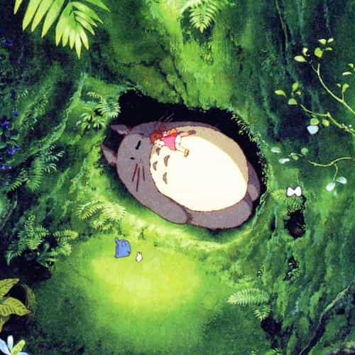 japan totoro art green anime illustration