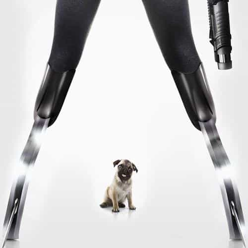kingsman poster dog art film