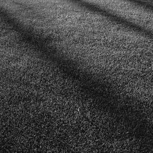 lawn grass sunlight green dark bw pattern