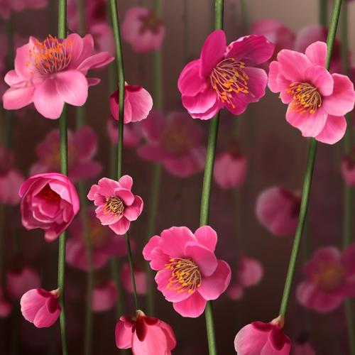 Layers of pink flowers wallpaper