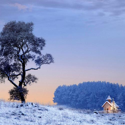 Lone cabin at Christmas