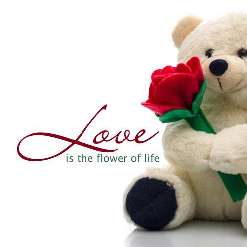 Lovely bear holding rose wallpaper