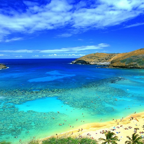 Magnificent Hawaii beach wallpaper