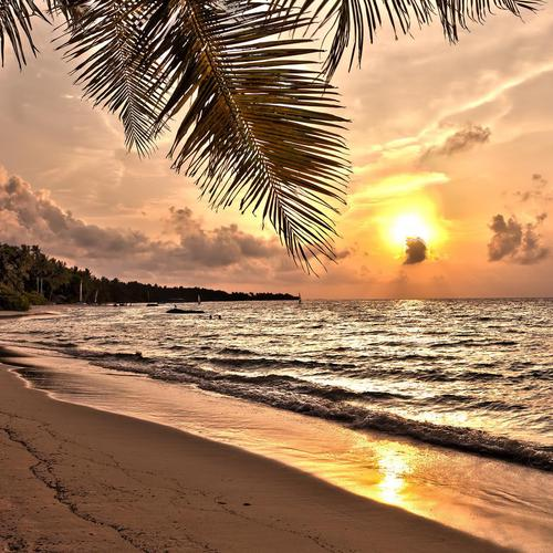 Magnificent sunset over tropical beach wallpaper
