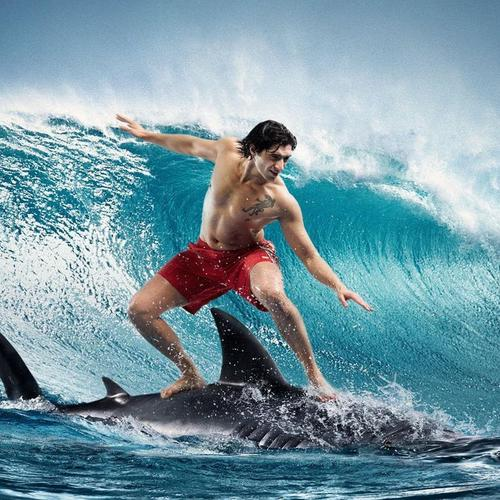 Man surfing on shark wallpaper