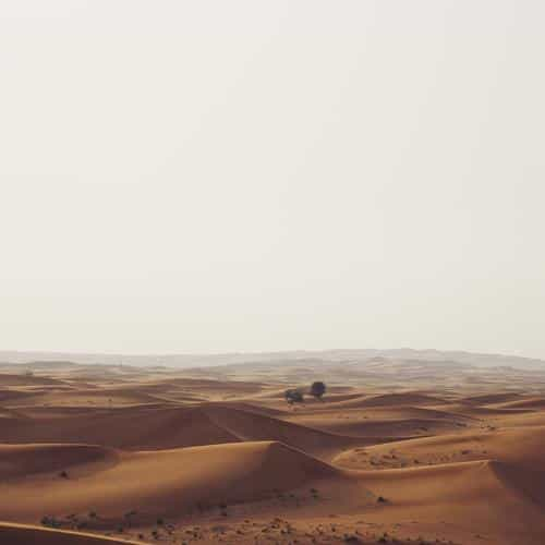 middle of sand desert nature